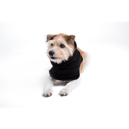Fashion (Hund)
